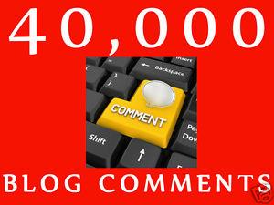 I will make 40,000 SEO blog comment backlincs scrapebox linkjuice