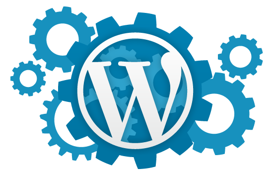 I Will Setup Wordpress and a Theme Just Like Demo and 10 Essential Plugins and Many more.