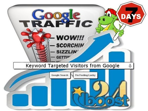 Daily keyword targeted visitors from Google for 7 days