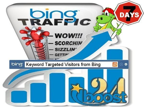 Daily keyword targeted visitors from Bing for 7 days