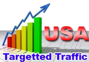 Send 5500+ USA Web Traffics with Social Media Referral