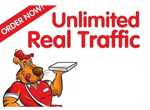 drive Keyword targeted UNLIMITED Google search traffic for 2 Months