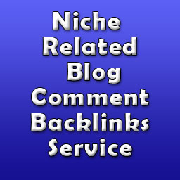 I will do 10 PR1+ High Quality Niche Related links. All Niche Accepted