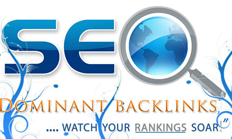 30 Days Superior SEO Campaign Only