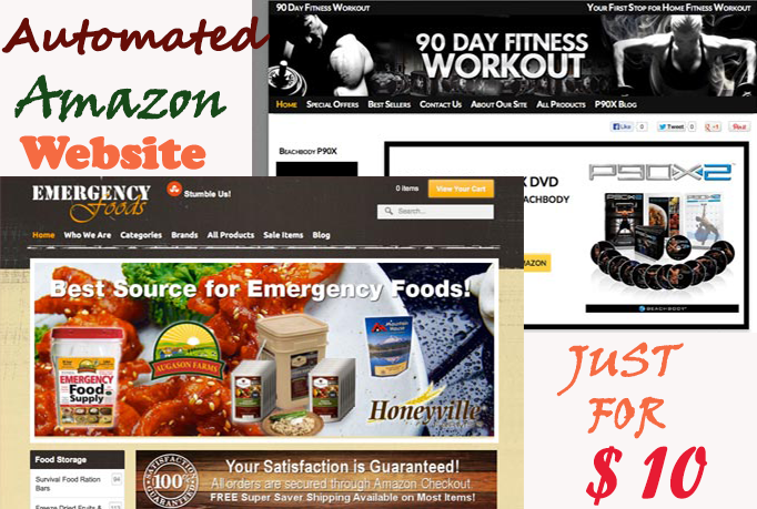 I will make easy fully Automated hassle free Amazon store Website