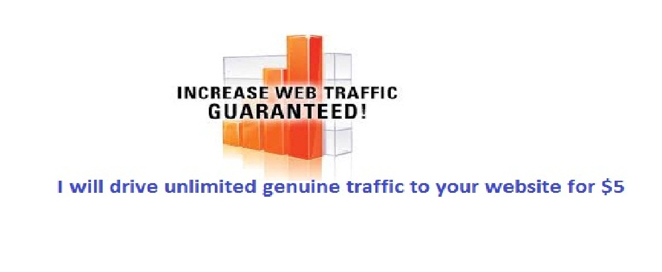 I will drive unlimited genuine traffic to your website
