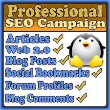 will make massive SEO Campaign High Page Rank backlinks