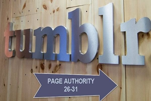 I will provide 15 expired Tumblr blogs of Moz Page Authority 27+