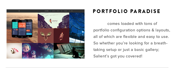 Make Wordpress website with premium themes