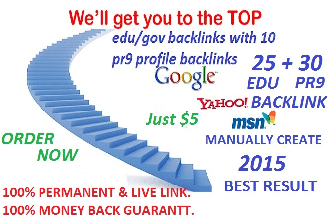 i will create 25 edu/gov  and 30 PR9  profile backlink just