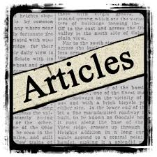 write 2 articles 250 words for a blog on any niche..