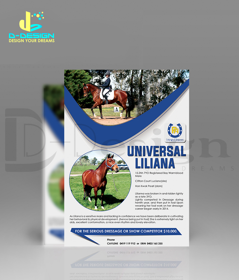 I will do Flyer and Brochure