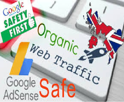 We Send 40,000 Traffic  Visitors Directly To Your Website