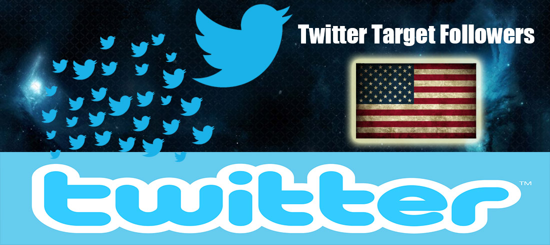 Twitter Audit Passed Instant 1000+ HQ USA Twitter Followers