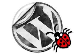 Fix Bug in Worpress Site