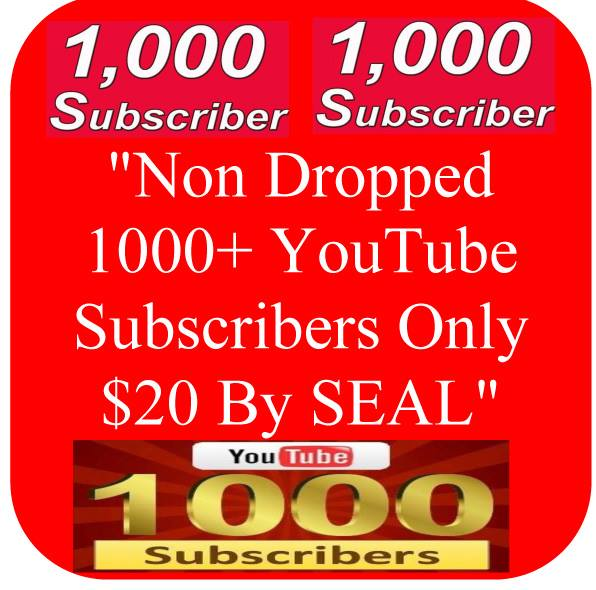 Lifetime Non Dropped Guaranteed 1000+ Real USA Basic YouTube Subscribers, or 3000 YouTube Likes or 10,000+ USA, UK, Canada Views