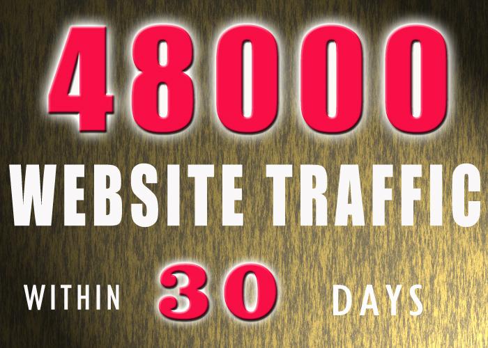 48000 WEBSITE TRAFFIC