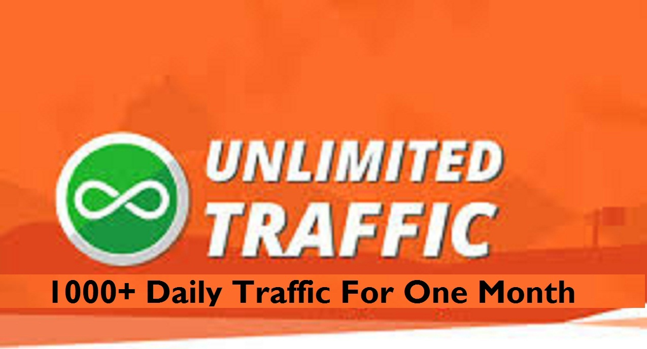 1,000+ Daily Traffic to Your Website for 30 days