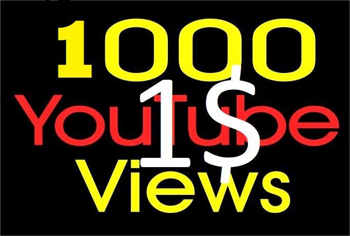 Give U 1000+ Guaranteed  Youtube Views with some bonus likes