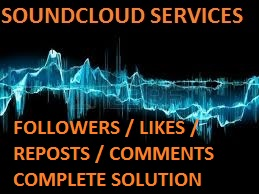 I'will provide you 200 Likes OR 200 Followers