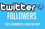 Instantly provide 10000 tvvitter followers