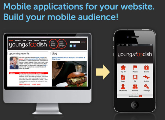 I will convert your website to Mobile App Android / iOS