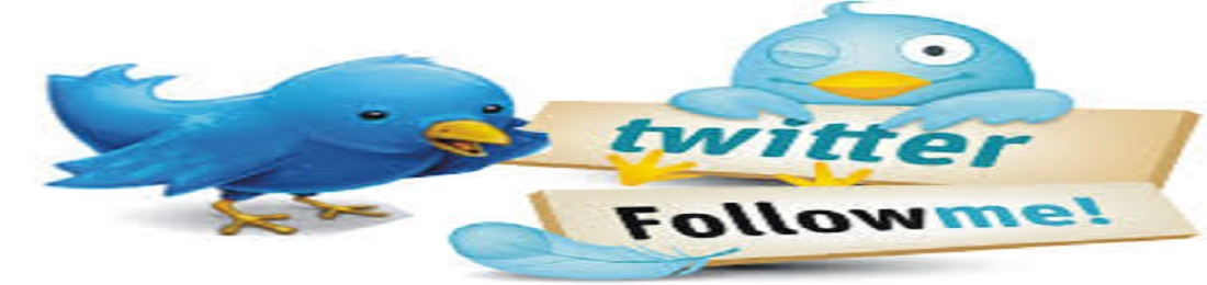 Chepest & amazing offer 10000 or 10k Twitt er Foll owers on your profile