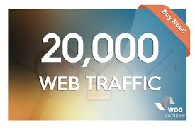20000 REAL HUMAN  ORGANIC traffic to your website or blog