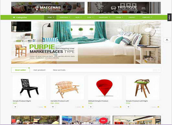 give you ecommerce wordpress store site