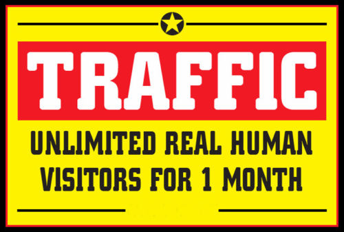 Targeted USA & CANADA UNLIMITED Website TRAFFIC f...