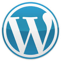 place code in wordpress website which detect fake traffic