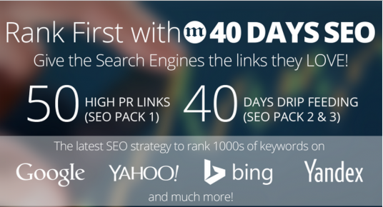 I will rank you First,  50 PR10 Niche Related Backlinks,  40days SEO