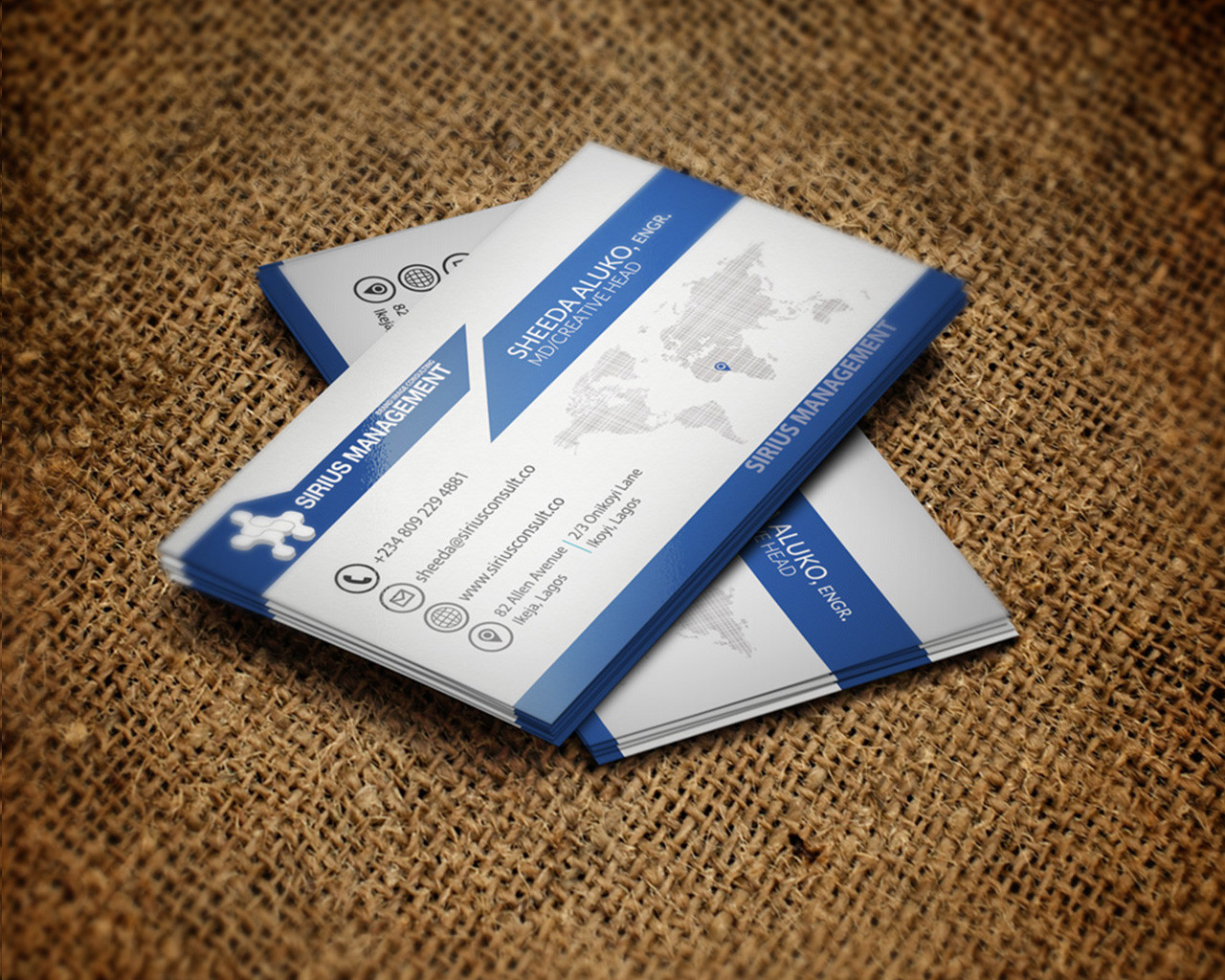 Professional Business Card for $3 SEOClerks