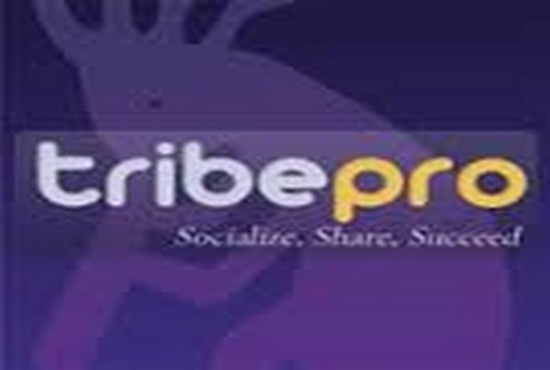 promote 2 URLSon tribepro in 300 social syndication a...