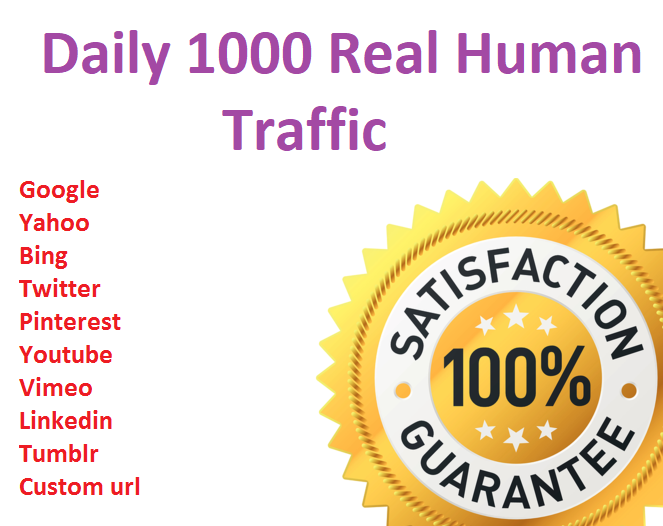 I will drive daily 1000+ real human traffic from Google,  yahoo etc for 10 days