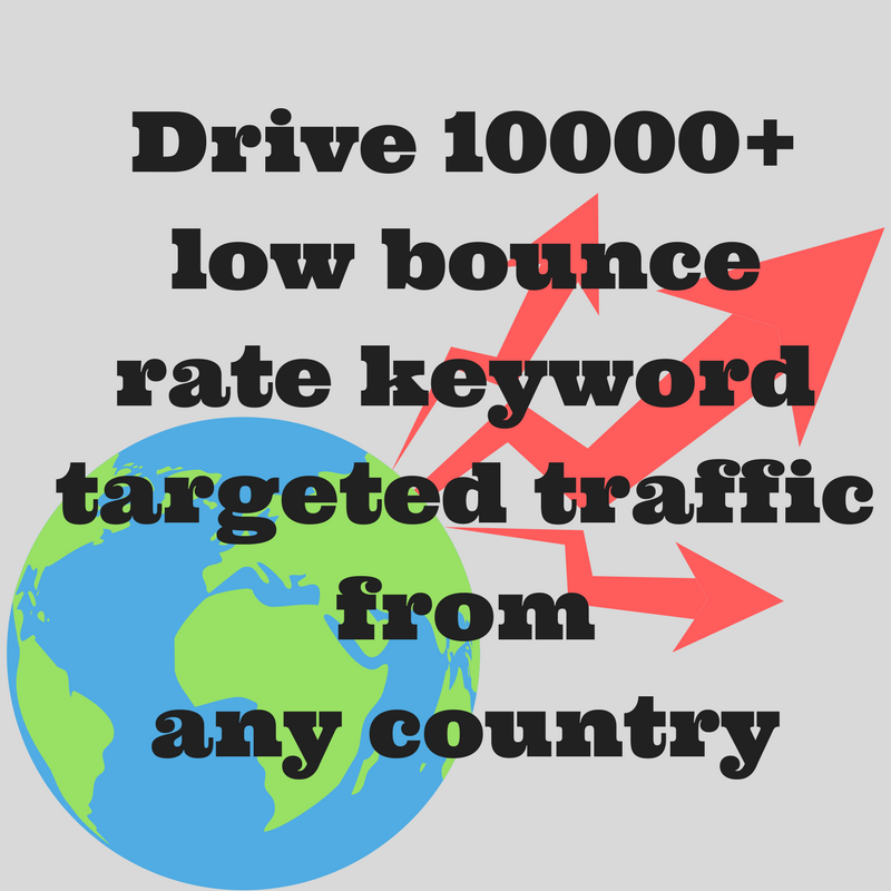 Drive 10000+ low bounce rate keyword targeted traffic from any country