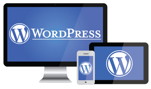I will make Wordpress website with Premium theme