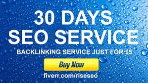 run 30 Days SEO campaign,  31001 backlinks