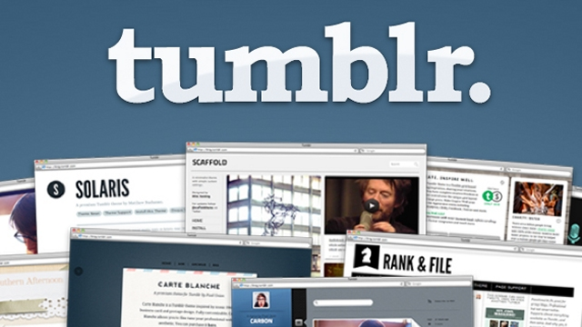 Will Send You 35 expired Tumblr blogs PA 28 - 40