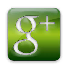 1500 Web site Like OR 100 Google Plus one social signal