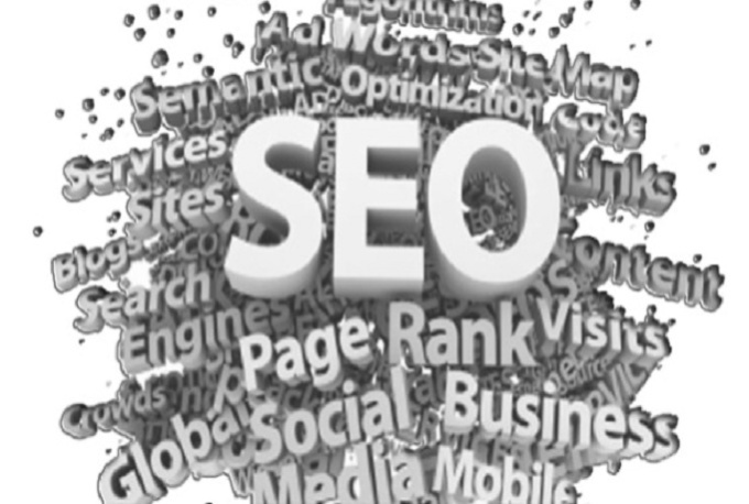 I will provide a step by step SEO blueprint plus extras