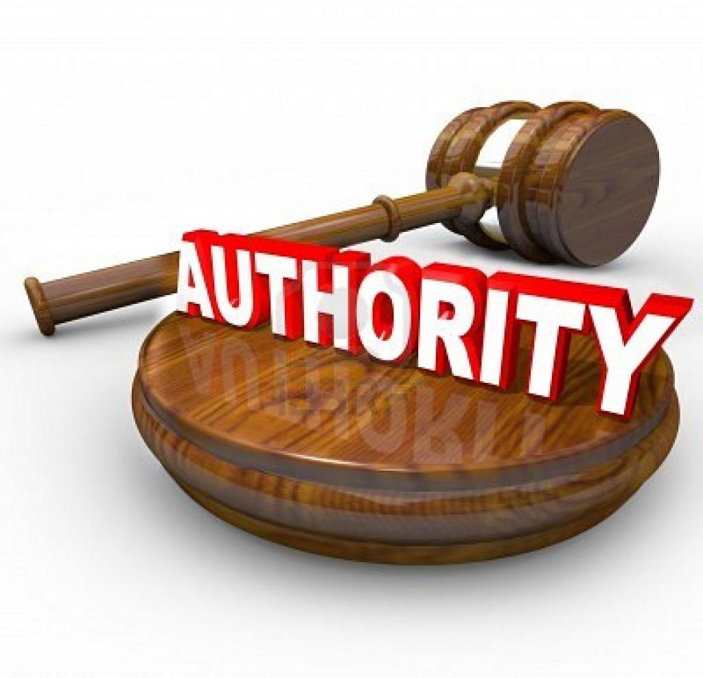 Manually create 100 PR 8-9 authority sites