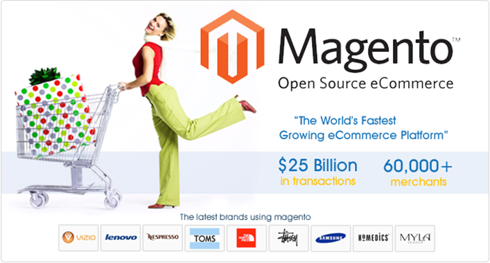 I will upload 1000 products to your magento store with images and informations