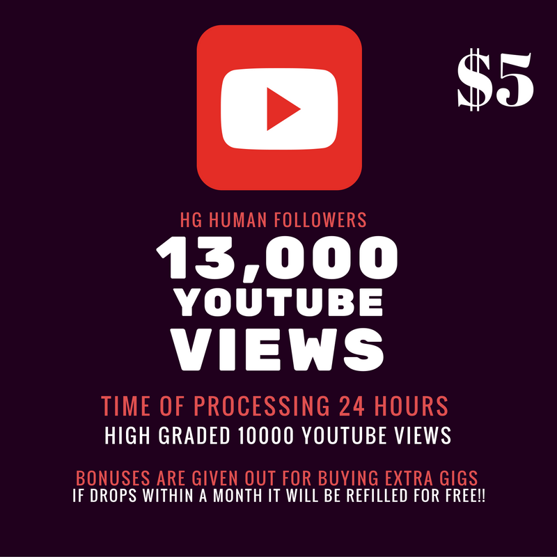 Fastest YouTube Promotion 13000 HR