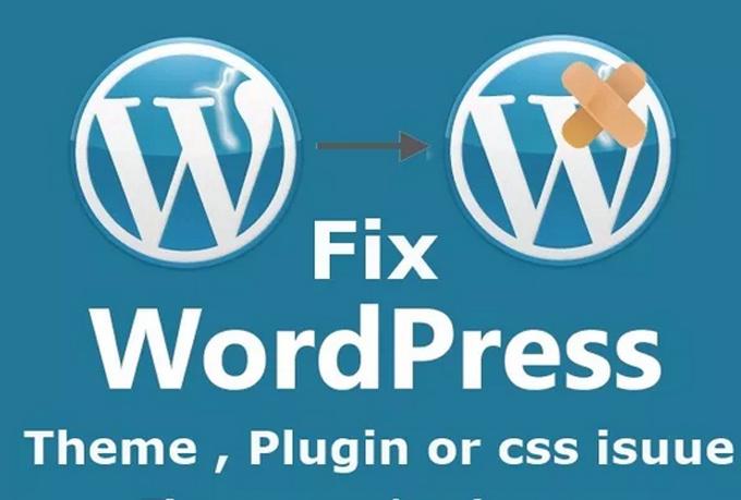 Fix Your WordPress Issues or WordPress Errors