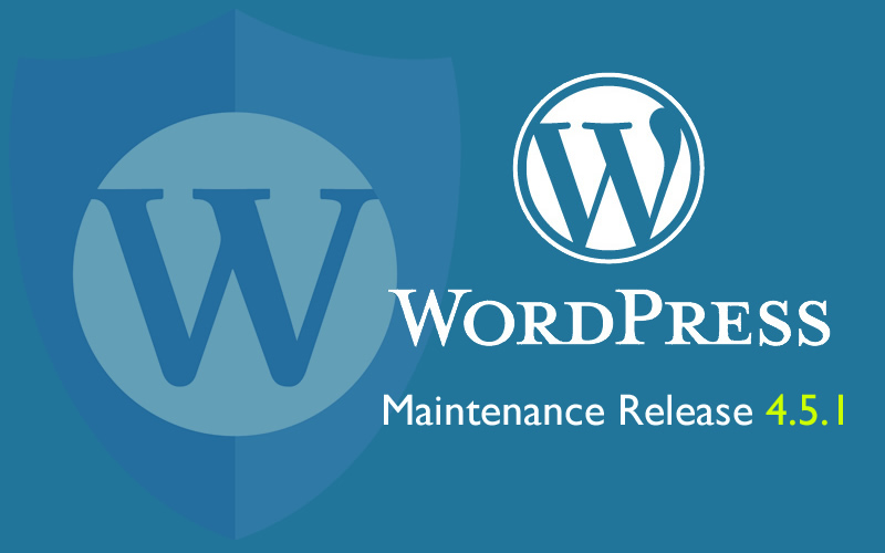Professional upgrade your Worpdpress or your plugins or themes
