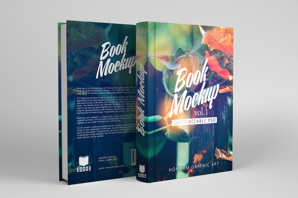 Design an attractive book cover + 1 cover bonus