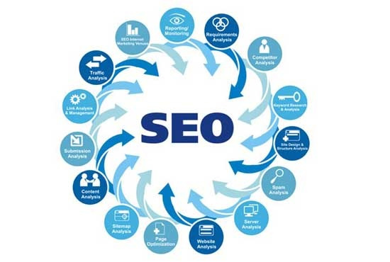 I provide complete analysis of website
