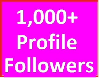 Instant 1,000+ Social Media Profile Followers High Quality Just