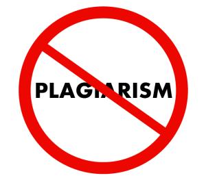 provide 3 Plagiarism Analysis report